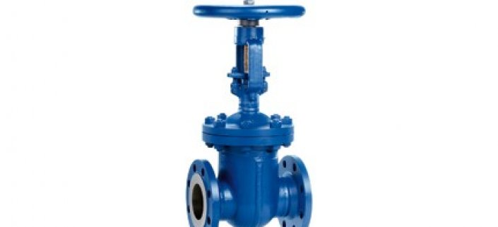 Gate Valve Flanged or Weld End